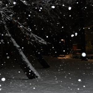 【修羅場】真冬に家の鍵を忘れた。夜中に帰宅したから呼び鈴押しても反応なし、田舎なのでファミレスもカラオケも車がないと行けない…