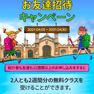 【APITREE】お友達紹介キャンペーン実施中!(4/30まで)