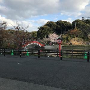 垣生公園(中間市)