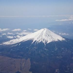 JALで東京から福岡へ♪