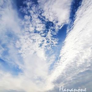 新しい風がふいています。HF100本ノック!