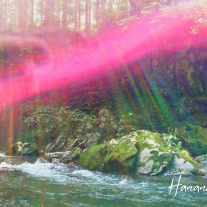 虹と羽ととんぼ