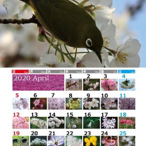4月のカレンダー 改訂しました