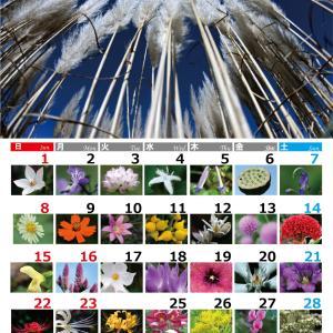 9月のカレンダーつくりました