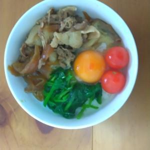 サラダ豚丼