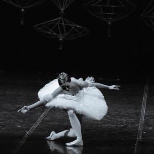 【バレエ】冒険してみる楽しさ