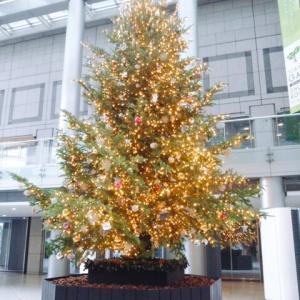 ニューヨークグリル ホリデーランチビュッフェ2019年12月 1 ~パークハイアット東京