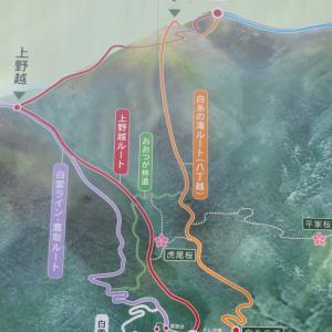 福岡県 福智山に登りました!