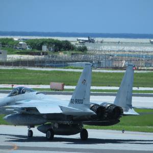 沖縄 F15 P3C ハーレートライク!
