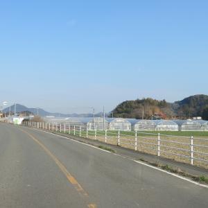 福岡県糸島市へ移住を検討しているO君へ⑥ 農業!