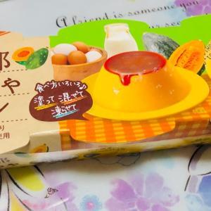 濃厚プリン「協同乳業」メイトーの万次郎かぼちゃプリン