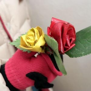 落ち葉のバラ