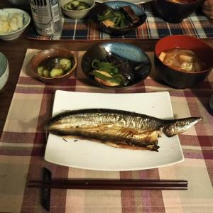 イライラ① (炊飯器)