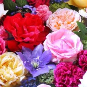 新居にお花を飾りたい♥