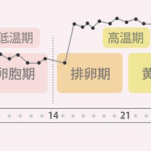 【不妊検査】実施検査の全体像(9/13時点)