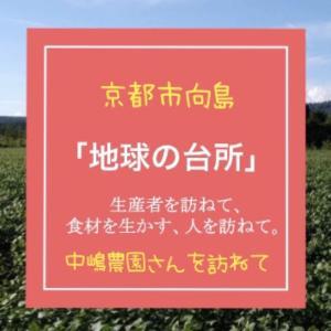 生産者さんを知ろう!〜京都市伏見区向島にある中嶋農園さんを訪ねて〜