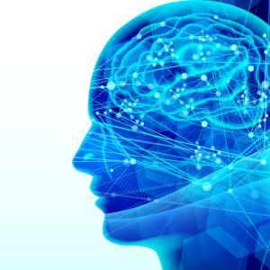 講師に求められる、女性脳と男性脳とは?!