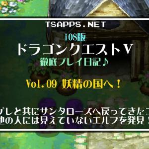 ドラクエ5(009)サンタローズに戻ると他の人に見えないエルフの姿が☆『iOS版ドラゴンクエスト5 徹底プレイ日記』