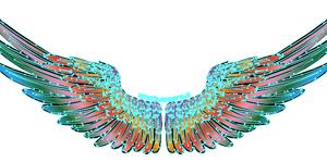翼 クレージーカラー (トートバッグ)