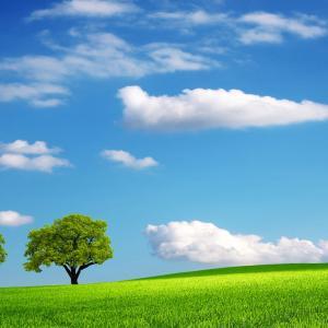 『天』と『地』と共に生きる子供たちへ♥