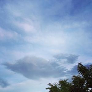 ドルフィンが泳ぐ♥パステルカラーの空
