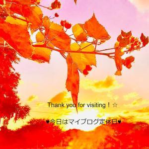 ♥~定休日~♥12.20
