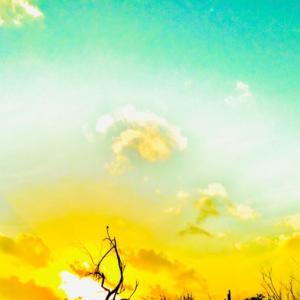 幸せは何処からともなくやってきて...~♡~05.16/17