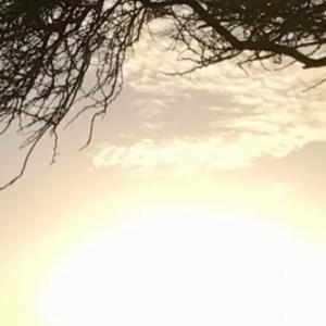アルバ島ファクト~♡~9月19日 【南カリブ海】