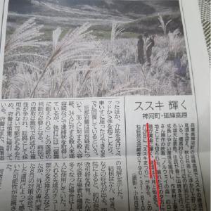 今日の砥峰高原の記事