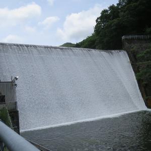 今日の草木ダム