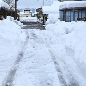 今回の積雪