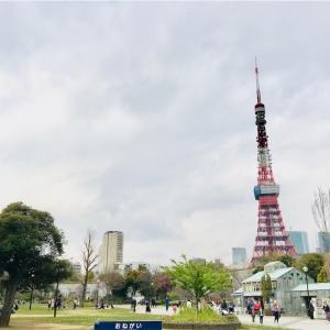 【芝公園】桜はまだ見ごろではなかったけれど、みどころいっぱい。探検してるみたいで楽しかったです!