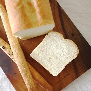 天然酵母の国産小麦食パンとグリッシーニを習う(小麦使用)