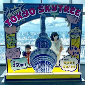 今日は東京の日〜小学校の入学式の思い出など〜あずきアイス~今晩の作り置きおかずとおうちごはん〜