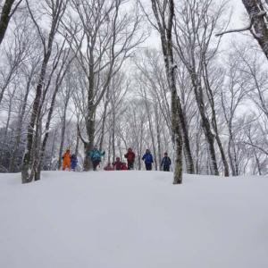 雪の駒ヶ岳スノーシュー