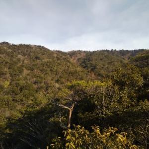 岩と森のリトル比良ワンデリング