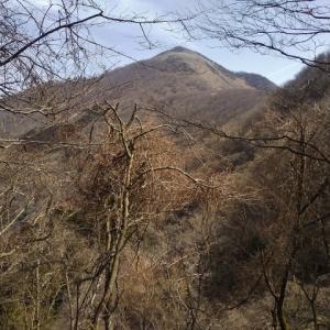 西南尾根から霊仙山へ