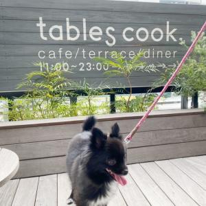 横浜ベイクォーター tables cook&LIVING  HOUSEでお昼ごはん