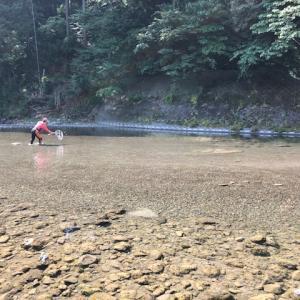 鮎釣り!リベンジそれとも返り討ち(秋川)