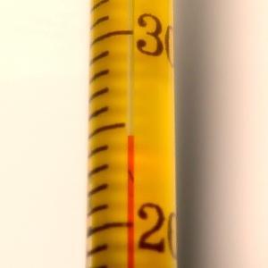 アクアリウム用 おすすめ水温計 2選