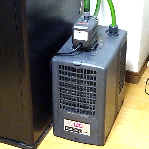 クーラーとポンプの選び方(追記-4):クーラー設置水槽の水温が上がり気味な理由