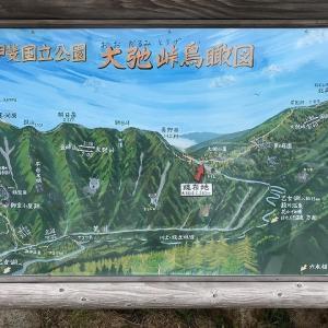 2019年6月30日(抜釘1年7ヶ月)金峰山登頂〓