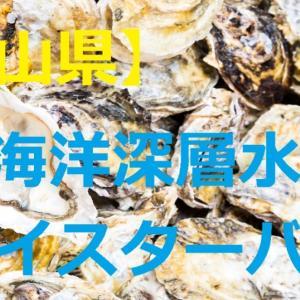【下新川郡入善町】オイスターバー「牡蠣ノ星」に行ってきた