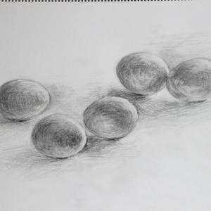 卵のデッサン