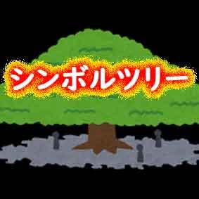 シンボルツリーの台風対策も忘れずに!