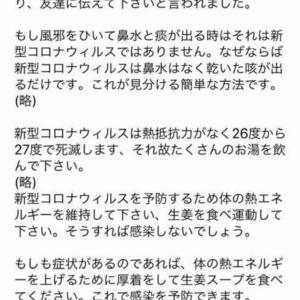 コロナ肺炎