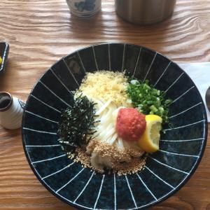 日本食のお店・5選  in 清州