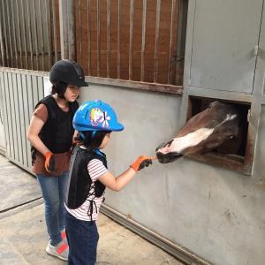子どもら乗馬体験 in 清州(태산승마타운)