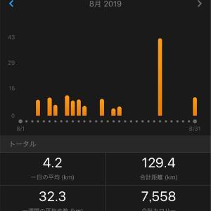 今月の走行距離