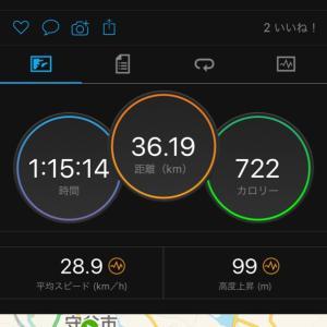 7/28  ミックス練 利根川サイクリングロードは茨城側を走るべし